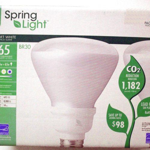 CFL Floodlights